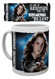Harry Potter - Dynamic Hermione Mug Mug