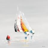 La bouée rouge Lámina por Gérard de Courcy