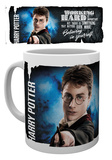 Harry Potter - Dynamic Harry Mug Mug
