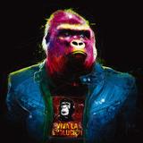 Gorille Plakaty autor Patrice Murciano