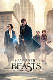 Fantastic Beasts- Streets Of New York Plakaty