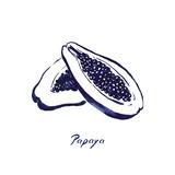 Indigo Papaya Posters by Aimee Wilson