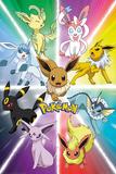 Pokemon- Eevee Evolution Poster