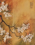 Oriental Blossoms II Posters by Jennifer Hammond