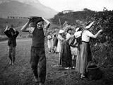 Grape Harvest in the Haut-Grésivaudan in Southern France, 1943 Fotodruck von  Süddeutsche Zeitung Photo