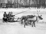 Samoyedic People with Reindeer Sleigh, 1924 Photographic Print by Scherl Süddeutsche Zeitung Photo