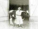 Female Butcher with a Cow, 1925 Photographic Print by Scherl Süddeutsche Zeitung Photo