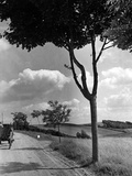 Countryside Near Grudziadz, 1942 Photographic Print by  Süddeutsche Zeitung Photo