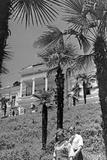 Spa Town Sukhumi in Abkhazia, 1941 Photographic Print by Scherl Süddeutsche Zeitung Photo