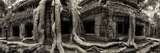 Strangler Fig Tree Roots Engulf Temple Ruins at Ta Prohm Temple Stretched Canvas Print by Jim Ricardson