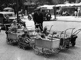 Pram Park in Berlin, 1937 Reprodukcja zdjęcia autor Scherl Süddeutsche Zeitung Photo