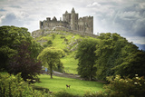 Rock of Cashel; Cashel County Tipperary Ireland Lærredstryk på blindramme af  Design Pics Inc
