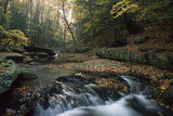 Small Waterfall on Hunting Creek in Fall, Catoctin Mountain Park, Maryland Stretched Canvas Print by Gerry Ellis