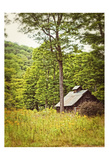 Country Barn 2 Vertical Vintage Posters by Suzanne Foschino