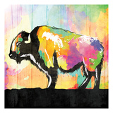 Colorful Buffalo Poster by Jace Grey