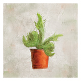 Potted Life 2 Print by Kimberly Allen