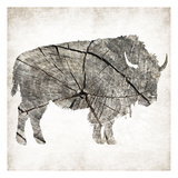 Buffalo Rings Mineral Poster by Jace Grey