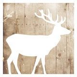 White On Wood Deer Prints by Jace Grey