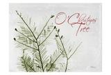 O Christmas Evergreen Prints by Albert Koetsier