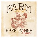 Farm Fresh Posters by Jace Grey