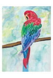 Tropical Perch I Prints by Beverly Dyer