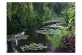 Giverny Pond Posters by Sarah Butcher