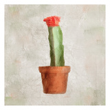 Potted Life 1 Prints by Kimberly Allen