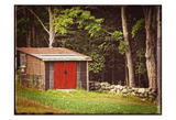 Country Red Door Shack Vintage Poster by Suzanne Foschino
