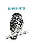 Saperlipopette Premium Giclee Print by Natasha Marie