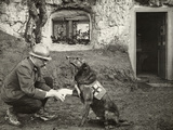 A WWI allied soldier bandages the paw of a Red Cross working dog. Photographic Print by Harriet Chalmers Adams