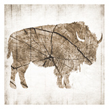 Buffalo Rings Prints by Jace Grey