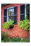 Country Store Window Flowers Posters by Suzanne Foschino