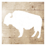 White On Wood Buffalo Prints by Jace Grey