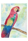 Tropical Perch II Posters by Beverly Dyer