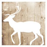 White On Wood Deer Mate Prints by Jace Grey