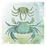 Sea Foam Crabs Print by Jace Grey