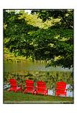 A Family Of Adirondak Chairs Prints by Suzanne Foschino