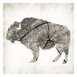 Buffalo Rings Mineral Prints by Jace Grey