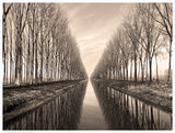 Serene Canal Posters