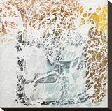 Coda 2 Stretched Canvas Print by Lynn Basa