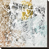 Coda 1 Stretched Canvas Print by Lynn Basa