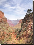 South Kaibab Stretched Canvas Print by Ken Bremer