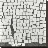 Wandering Grid 2 Stretched Canvas Print by Lynn Basa