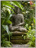 Bali, Ubud, a Statue of buddha Sits Serenely in Gardens Framed Photographic Print by Niels Van Gijn