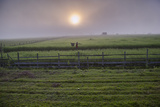 A Man Walks Through Agricultural Fields Photographic Print by Cory Richards