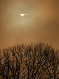 Smoke from a Woodland Fire Obliterates the Sun Photographic Print by Amy & Al White & Petteway