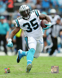 NFL: Mike Tolbert 2016 Action Photo