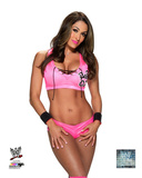 WWE: Nikki Bella 2014 Posed Photo