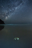 The Milky Way Above a Crab on a Beach Photographic Print by Alex Saberi