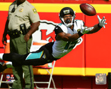 NFL: Allen Robinson 2016 Action Photo